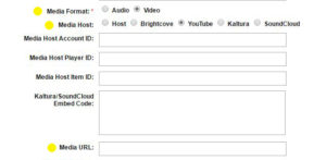 Streaming Video and Audio in OHMS with a Focus on YouTube